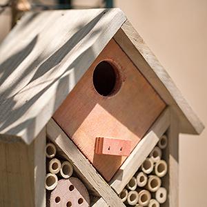 Diamondback Bee House