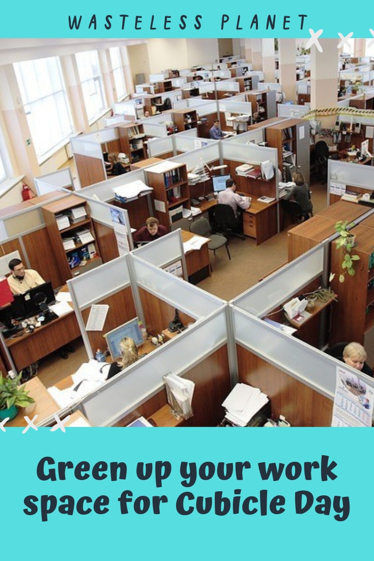 How to make your cubicle or office space more fun and eco-friendly to improve your work day.  #WastelessPlanet #CubicleDay #cubicle #office #workspace #work #ecofriendly #selfcare