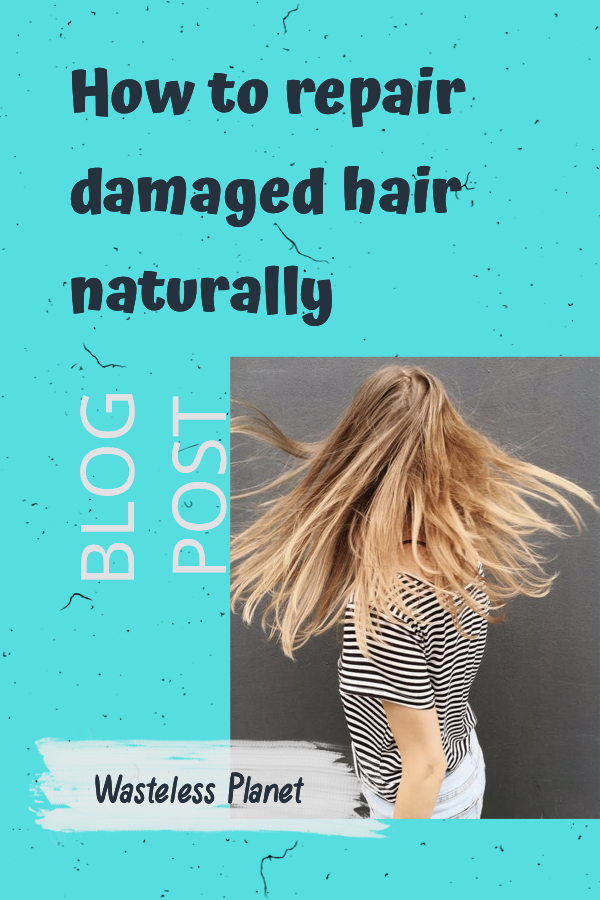 Your hair is dealing with a lot on a daily basis. Dry office air, pollution and smog, toxins and chemicals in shampoos and laundry detergent, rough combing and brushing, heat styling and dry blowing. If your hair isn\'t the shiny, healthy way it used to be, it\'s high time to repair your damaged hair. And naturally, here at Wasteless Planet, you\'ll learn how to repair damaged hair naturally.  #WastelessPlanet #hairrepair #hair #organic #eco-friendly #toxicfree #damagedhair #repairhairnaturally